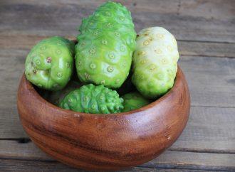 Noni – owoc bogów