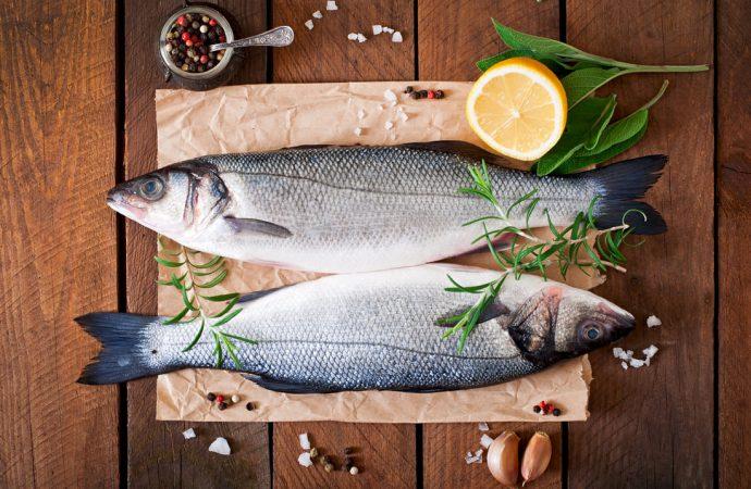 Gdzie kupić świeże ryby dobrej jakości?